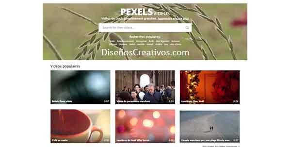 web-para-descargar-videos-sin-derecho-de-autor