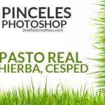 PINCELES-DE-PASTO-PARA-PHOTOSHOP