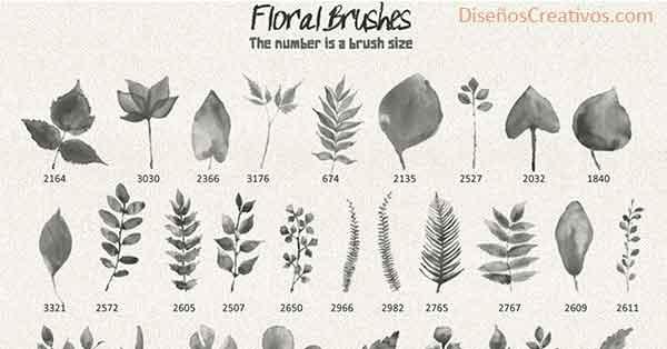 pincel-acuarela-forma-de-hojas-para-photoshop